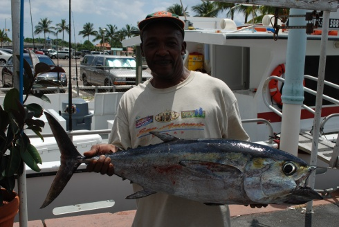 24lb Black Fin Tuna