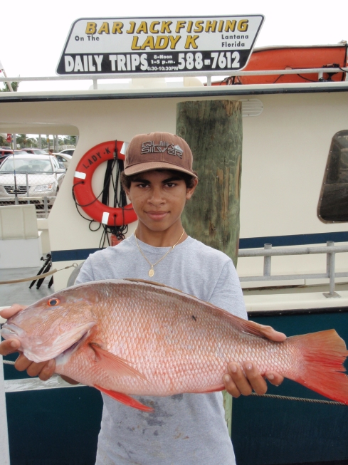 7 3/4 pd Mutton Snapper